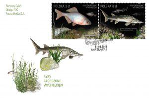 Ryby zagrozone rozanka jesiotr koperta popr