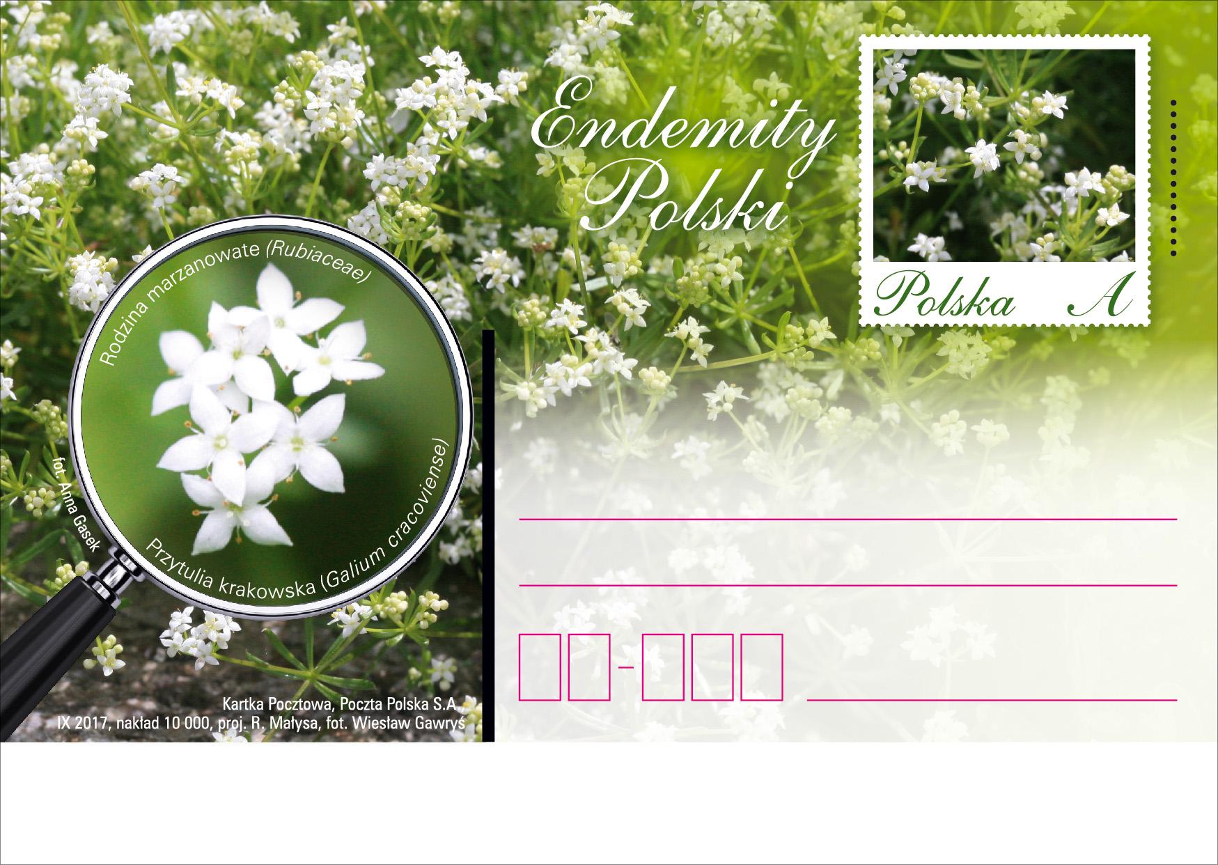 波兰9月18日发行波兰特有邮资片